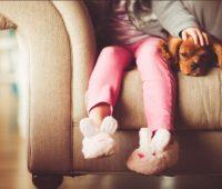 Animais em condomínio - cão